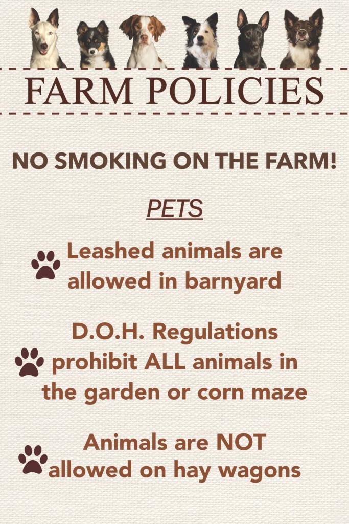 Salisbury Farm Poster Design 3